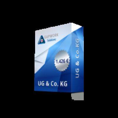 UG & CO.KG 1.426,00 € 19% ÁFA