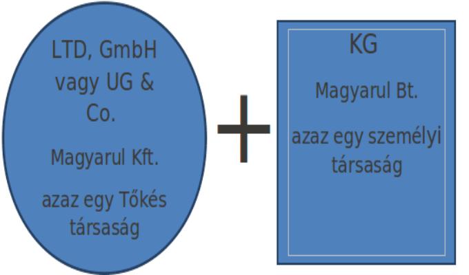 MI AZ LTD vagy GmbH vagy  UG & CO.KG?
